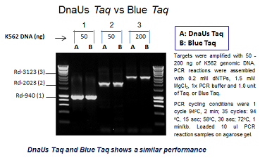 Blue Taq DNA Polymerase Plus