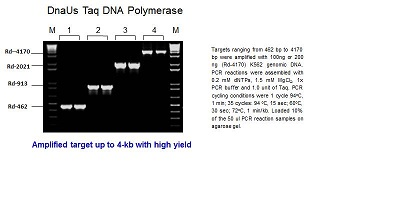 DnaUs Taq DNA Polymerase