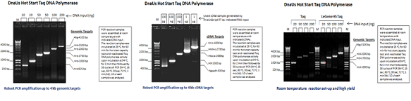 DnaUs Hot Start Taq DNA Polymerase (up to 4 kb)