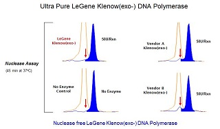 Klenow(exo-) DNA Polymerase