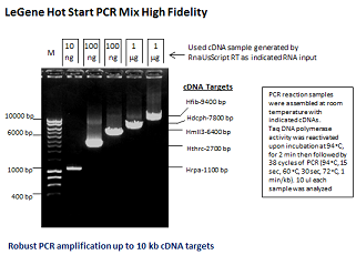 LeGene Hot Start PCR MIx High Fidelity (up to 12 kb)